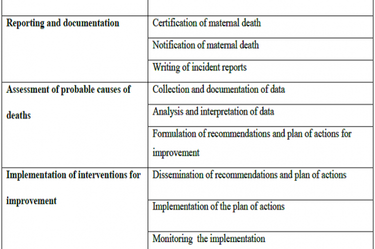 List of themes and sub-themes of the midwives' contributions