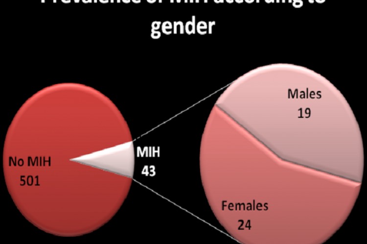 Gender distribution of MIH