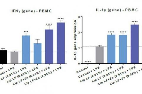 Bar graphs showing TNFα, IL-1β, IL-6 and IFNγ gene expression results after treating Peripheral Blood Mononuclear Cells (PBMC) at 0.01% and 0.05% concentrations