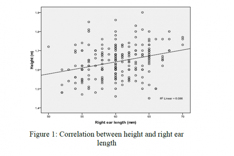 Correlation between height and right ear length
